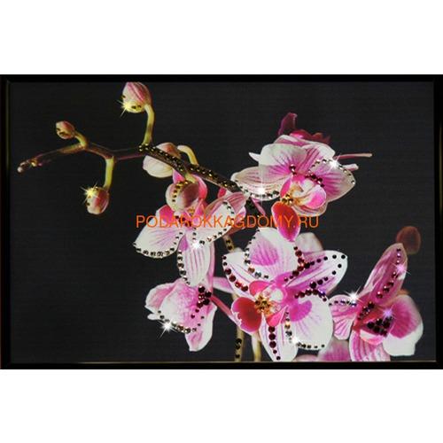 """Картина Сваровски """"Орхидея"""" 16131 фото"""