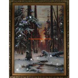 Зимний закат в еловом лесу