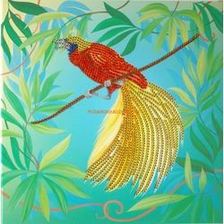 Райская птичка